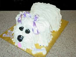 birthday cake for a dog