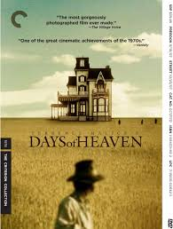 days of heaven dvd
