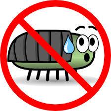 bug graphic