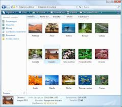 explorador de windows vista