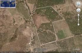 10 hectareas