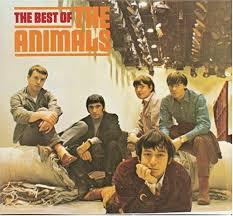 animals best of