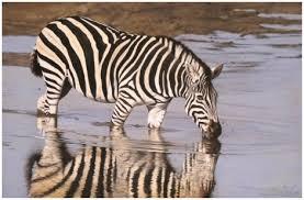 african wildlife paintings