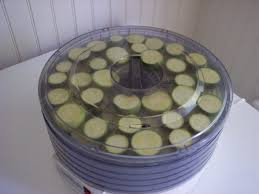 food preservation drying