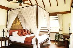 tropical theme bedrooms