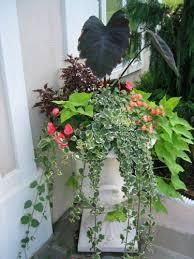 container flower gardens