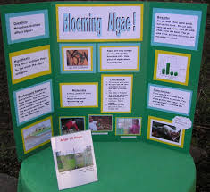 science fair project examples