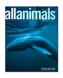 all animals pictures