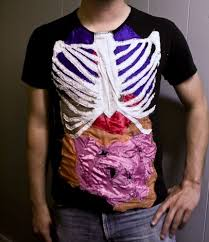 anatomy human picture