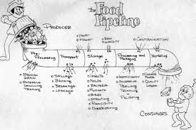 madagascar food web