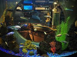 Gelendzhik Oceanarium Sea