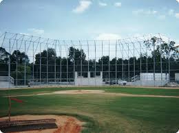 backstop baseball