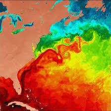 gulf stream currents