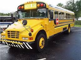 bluebird buses