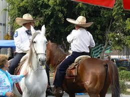 caballos de mexico