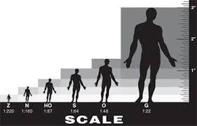 scale people