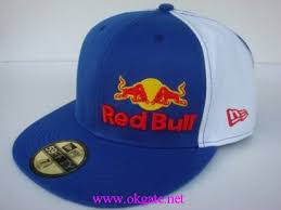ryan sheckler red bull hats
