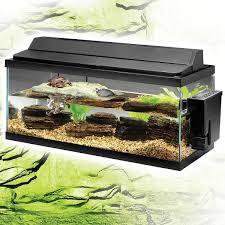 large turtle aquariums