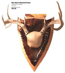 antler mounting plaques