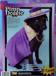 pimp dog costume