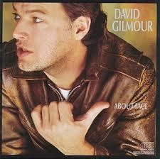 david gilmour model