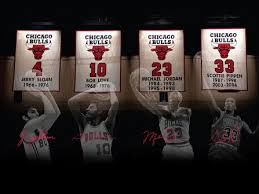 Chicago bulls suck images