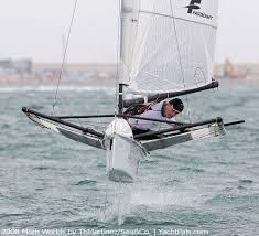 sailing moths