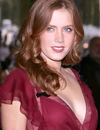 amy adams career