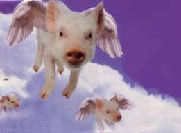 pigs flying picture