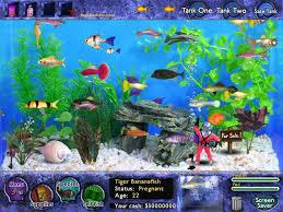 fish fotos