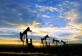 oil photos