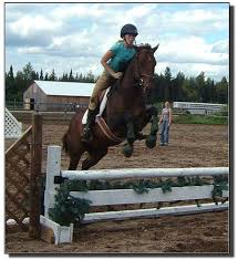 hunter jumper riding