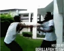 crip fights