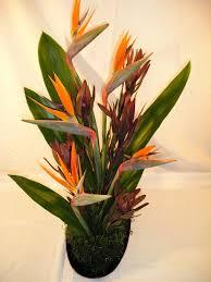 birds of paradise flower arrangement