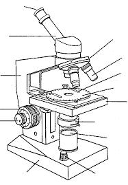 partes de microscopio