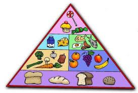 6 main food groups