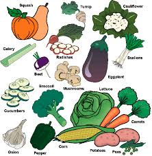 food pyramid vegetables