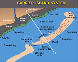 the barrier islands