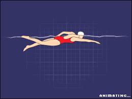 front crawl swim
