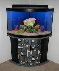 coral reef decor