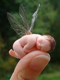 baby fairy images