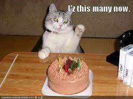 happy birthday humorous