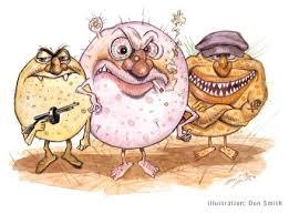 bacteria bad