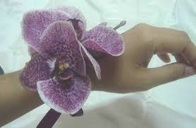 orchid wrist corsages