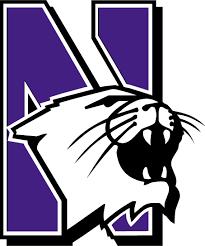 northwestern wildcat