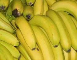 african banana