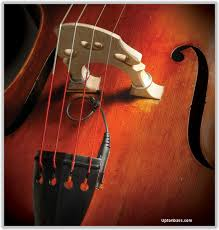 electronic upright bass