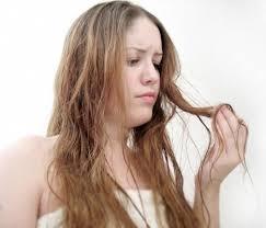 long hair split ends