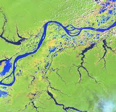 amazon river tributaries