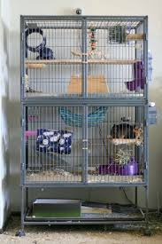 chinchilla housing